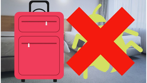 clean luggage bed bugs